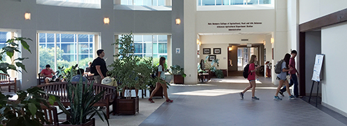 students walking through AFLS atrium